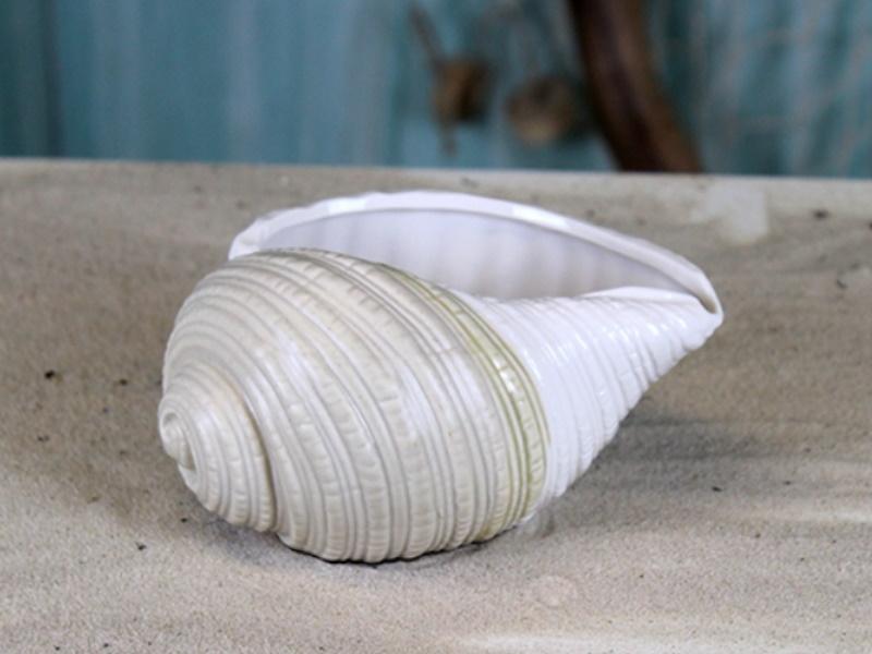 Porzellan-Pflanzschale Muschel Blumentopf (weiss/beige) B14cm x T9,2cm x H7,3cm