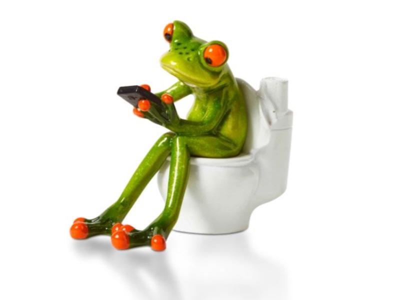 Lustige und herzliche Frösche - sensationelle Deko - Motiv  auf Toilette