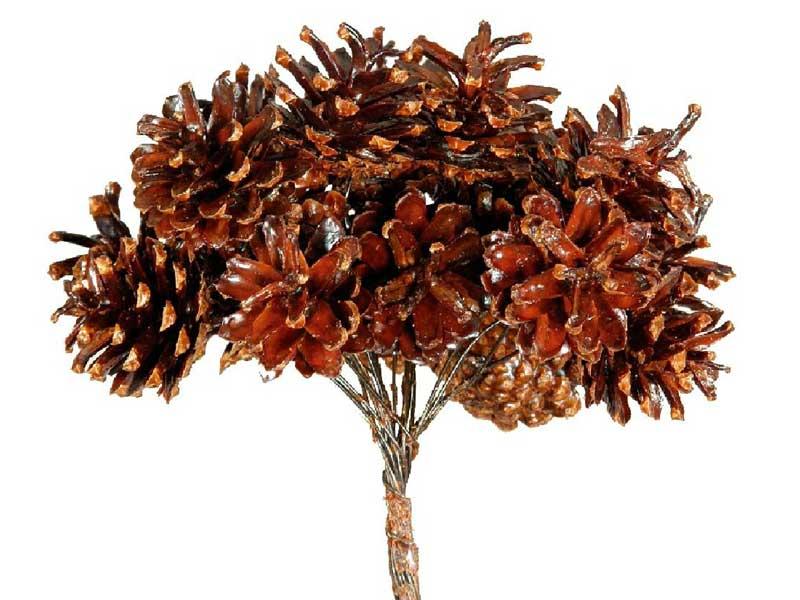 100 Stück Schwarzkiefer Zapfen an Draht zum dekorieren Basteln für Gestecke Kränze