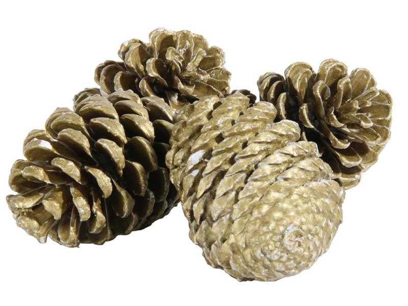 4 Große Deko-Zapfen Maritima gewachst gold im Netz